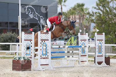 Oliva, Spain - 2020 March 13: Bronze tour 1m20 during CSI Mediterranean Equestrian Spring Tour 3.(photo: 1clicphoto)