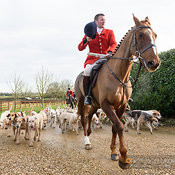 The Cottesmore Hunt at Furze Hill 28/1