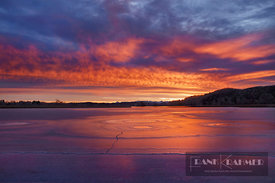 Sunrise impression at frozen lake - Europe, Germany, Bavaria, Upper Bavaria, Miesbach, Seehamer See - digital
