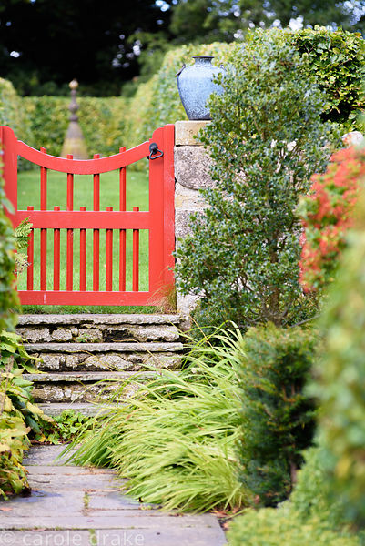 Path leading to a red painted gate passes evergreens including yew, holly and pyracantha at Broadwoodside, Gifford, East Loth...