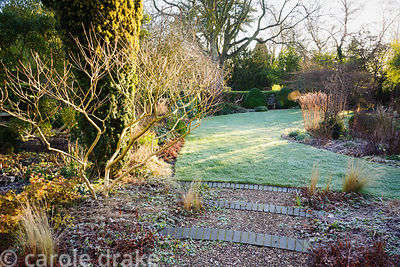 Grey bricks edge gravel steps leading from the gravel garden to the lawn in the front garden framed by a fastigiate yew and d...