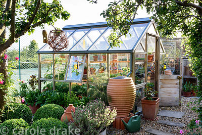 Greenhouse surrounded by clipped box and containers planted with French lavender and tender plants including begonias at Malt...
