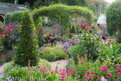 Standard olives, bay pyramids and rose arch clad with Rosa banksiae surrounded by exuberant planting including dahlias, penst...