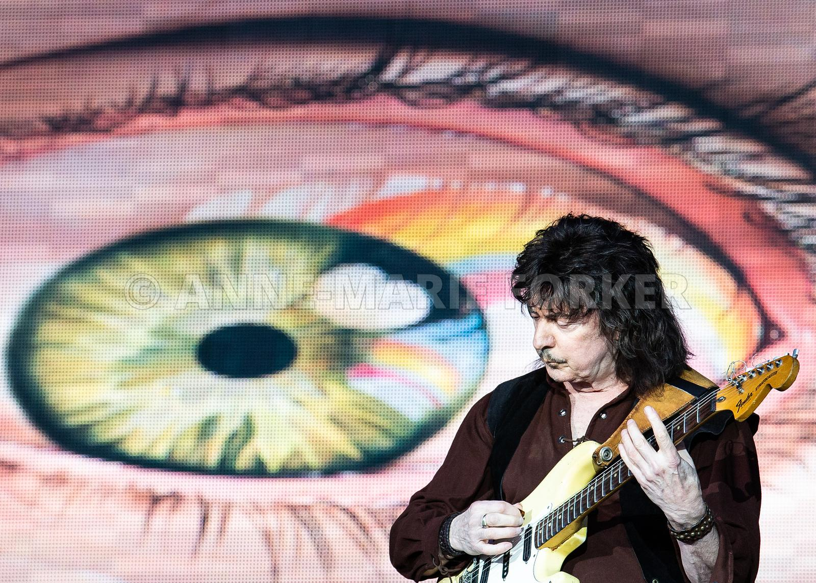 Ritchie_Blackmore_by_Anne-Marie_Forker-2398
