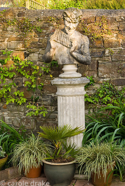 Bust of Pan with pots of foliage plants below including a palm and grasses. 24 Bude Street, Appledore, Devon, UK