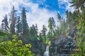 Waterfall Watson Falls - North America, USA, Oregon, Douglas, Clearwater, Watson Falls (Cascade Range, Umpqua National Forest...