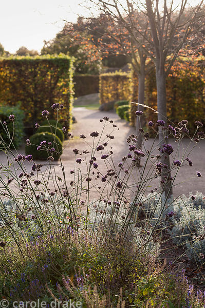Walled garden designed by Brita von Schoenaich featuring Amelanchier × grandiflora 'Robin Hill' and herbaceous perennials inc...