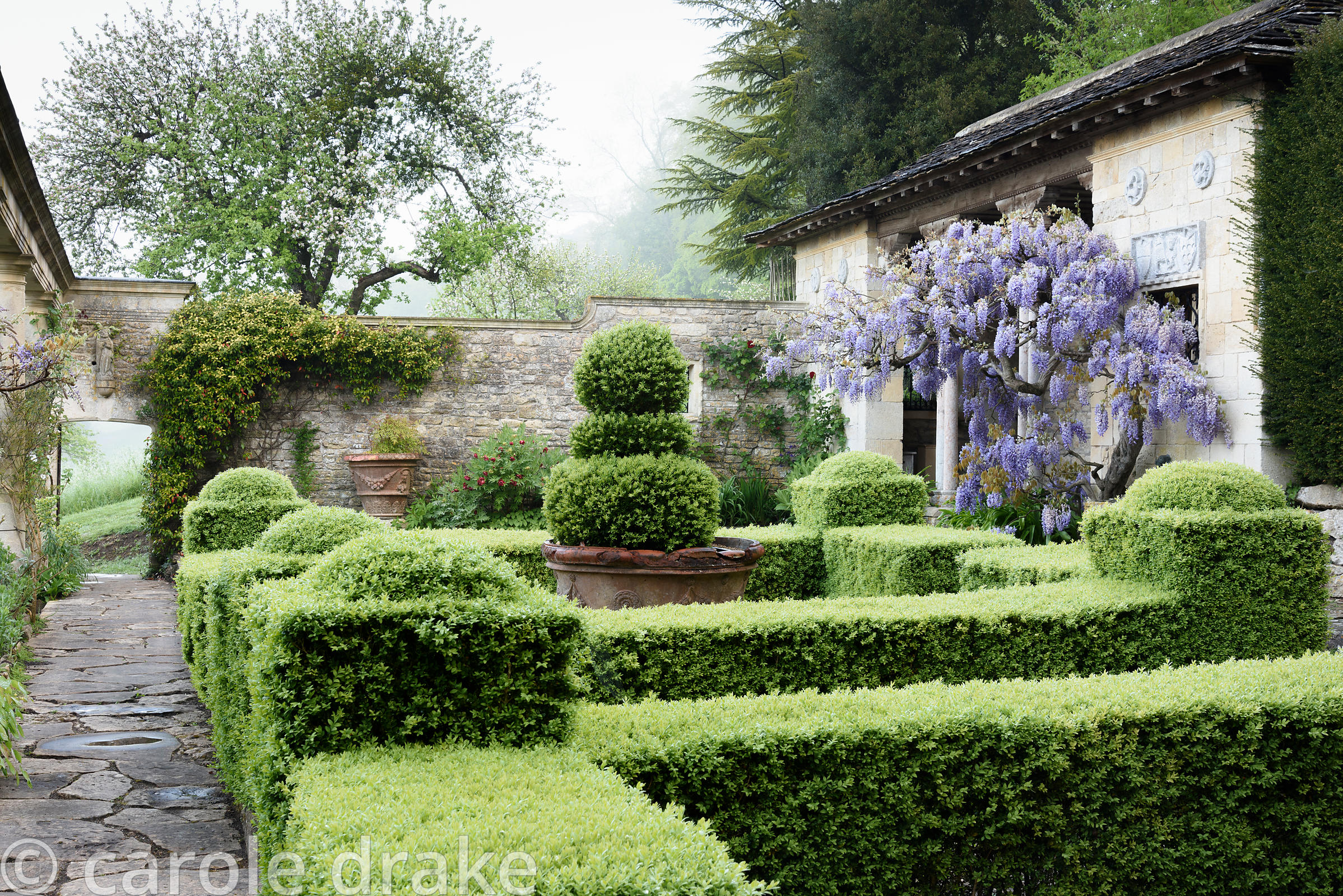 The Casita with wisteria, ,clipped box parterre and stonework at Iford Manor, Bradford-on-Avon, Wilts in May