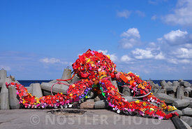 Recycling Octopus
