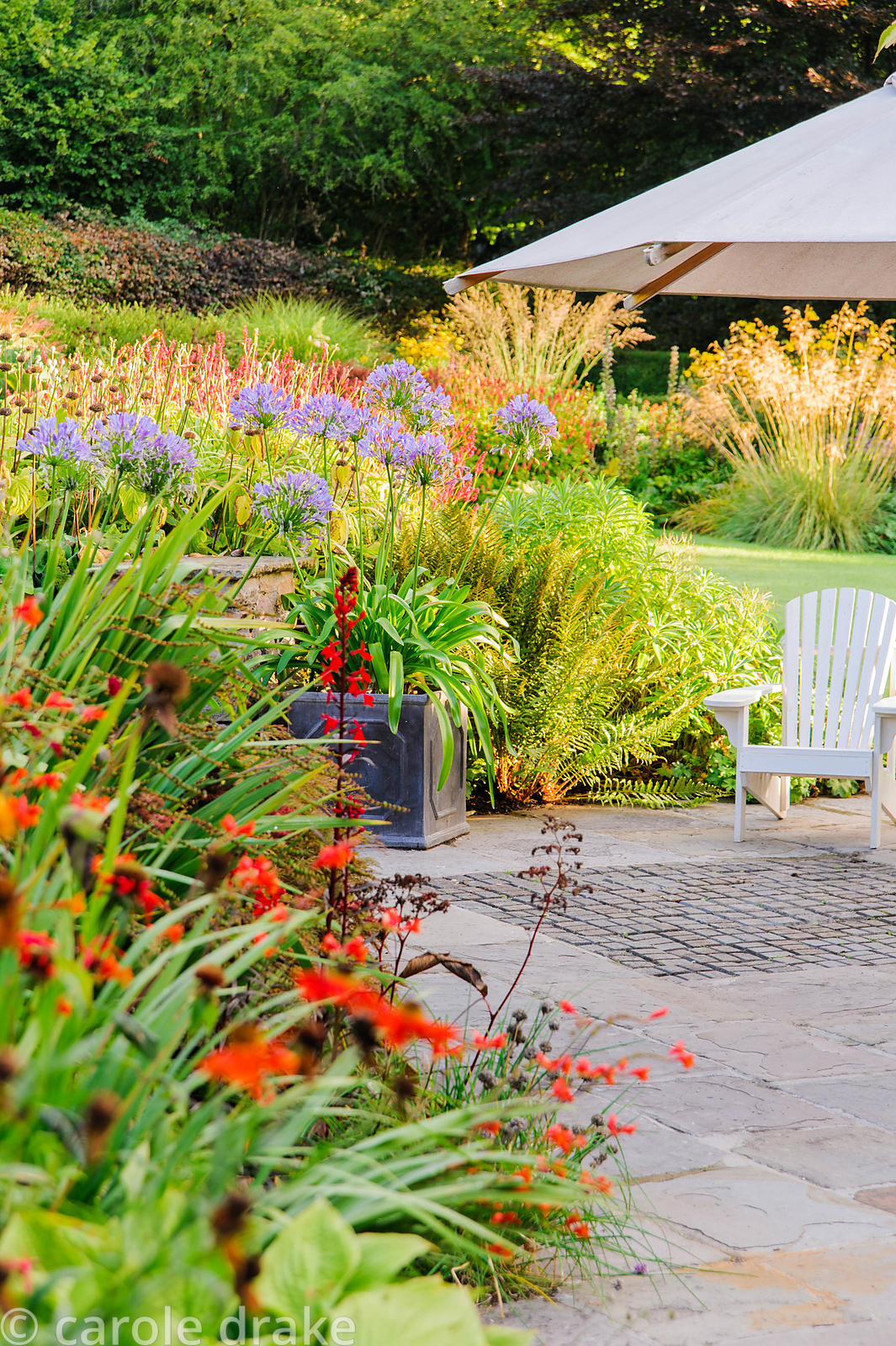 Terrace behind the house is framed by lush, colourful planting including agapanthus, heleniums, red Lobelia cardinalis and ho...