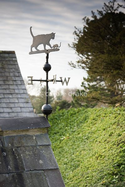 Cat and mouse weathervane at the Old Rectory, Netherbury in January