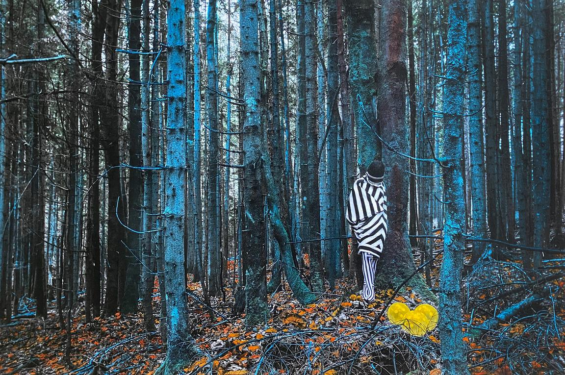 The blue forest with yellow balloon