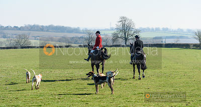 Andrew Osborne, hounds at Mr Wilson's. The Cottesmore Hunt at Ladywood Lodge