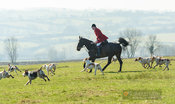 Andrew Osborne, hounds at Orton Park. The Cottesmore Hunt at Ladywood Lodge