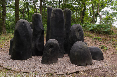 Black Mound by David Nash