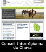 Cons-interregionnal-du-cheval