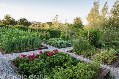The vegetable garden, with countryside beyond. The 'Garten' Garden, Lower Treculliacks Farm, Falmouth, Cornwall, UK