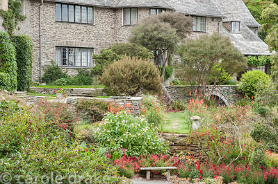 Stone terracing around the house with plants including Impatiens tinctoria, kniphofias, penstemons and red bottlebrush. Colet...