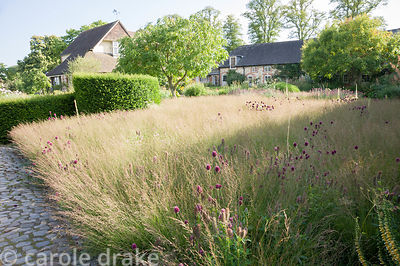 The Courtyard Garden designed by Piet Oudolf and John Coke features large areas of low grasses that mimic surrounding meadows...