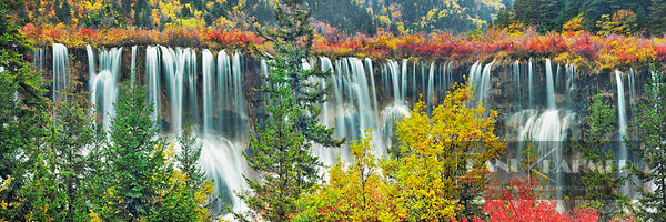 Waterfall Nuorilang and forest in autumn - Asia, China, Sichuan, Jiuzhaigou, Nuorilang Waterfall - digital