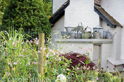 Collection of galvanised buckets, drinkers and watering cans on a flat roof at Five Oaks Cottage in July