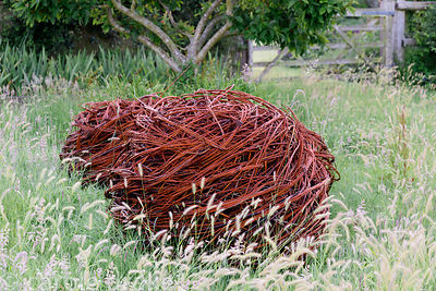 Woven willow ball amongst long grass at Malthouse Farm, Hassocks, Sussex