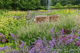 Wooden seats in The Perennial Meadow at Scampston Hall Walled Garden, North Yorkshire, designed by Piet Oudolf. Planting incl...