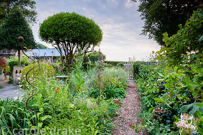 Path between densely planted borders at Five Oaks Cottage in July