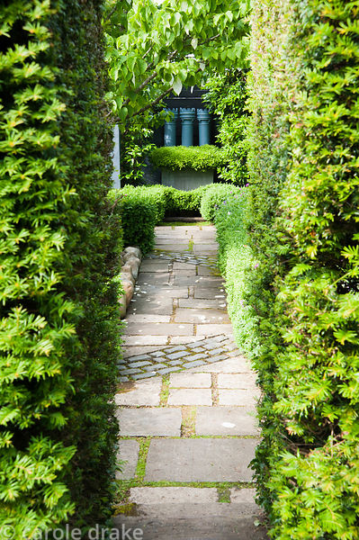 Path leads between yew hedges toward three grey painted chimney pots with a skirt of small leaved box, Buxus microphylla, in ...