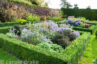 Sloping walled garden features beds and path laid out to Voysey's original plan with box edged beds planted with asters, macl...