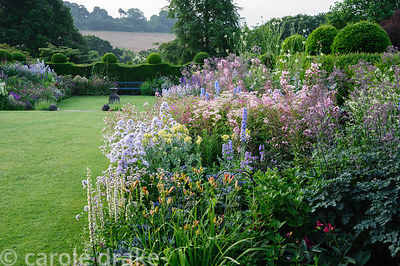 Herbaceous borders brim with daylilies, Verbascum chaixii 'Album', thalictrum, delphiniums, epilobiums, campanulas and Cephal...