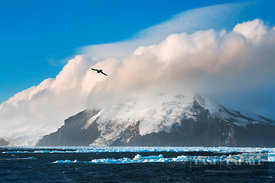 Volcano island South Thule - Antarctica, South Sandwich Islands, South Thule - digital