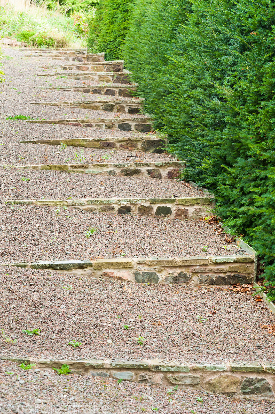 Shallow steps built into the sloping walled garden. Perrycroft, Upper Colwall, Herefordshire, UK