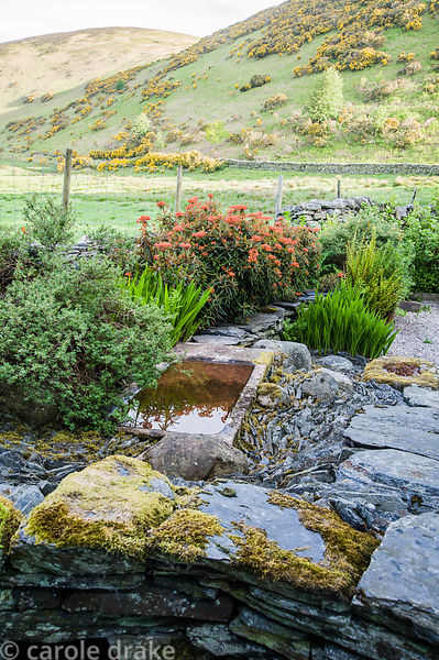 Stone River, a sinuous slate inset around stones and a sunken sink with Euphorbia griffithii 'Fireglow' behind.