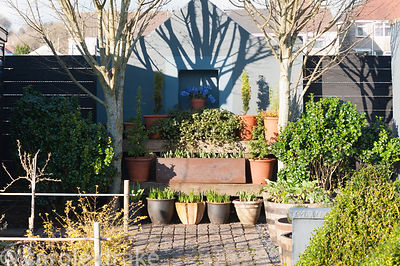 A path of stone setts in a formal kitchen garden leads toward display staging arranged with pots of bulbs, ivy and other ever...