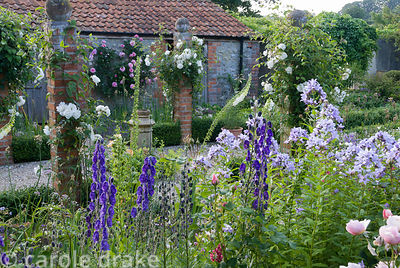 Brick pillars in farmyard garden planted with Rosa 'Iceberg' and clematis with herbaceous plants including campanula, foxglov...