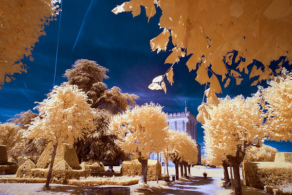 July 13  Workshop infrared photography