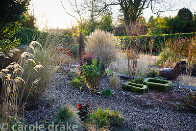 Gravel garden in front of the house includes many grasses and herbaceous perennials plus black Ophiopogon planiscapus 'Nigres...
