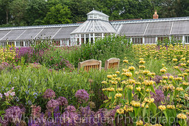 The Perennial Meadow and Victorian Conservatory at Scampston Hall Walled Garden, North Yorkshire, designed by Piet Oudolf. Pl...