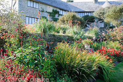 Hot border below the house bursting with colour, includes crocosmias, dahlias, gladioli, Salvia confertiflora, penstemons and...