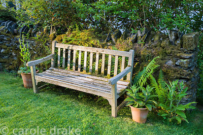 A bench against a stone wall is framed by ferns and a pair of terracotta pots.