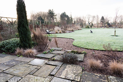 Curvaceous lawn framed with borders planted with grasses and evergreens including conifers and hebes at Ellicar Gardens, Nott...