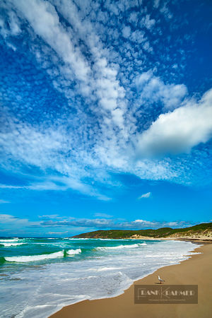Beach impression at Conspicuous Beach - Australia, Australia, Western Australia, Southwest, Walpole Nornalup Nationalpark, Co...