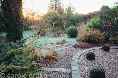 Grey sets edge gravel steps in the front garden with clipped yew spheres and shrubs in surrounding beds including box, Pseudo...