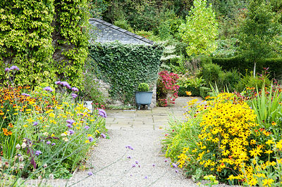 Hot colours fill the herbaceous borders framing path toward entrance of house including heleniums, rudbeckias and crocosmias....