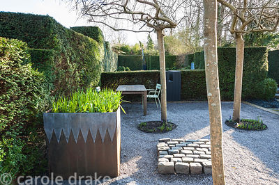 A gravelled courtyard features four weeping ash, Fraxinus excelsior 'Pendula', a steel and lead container, an arrangement of ...