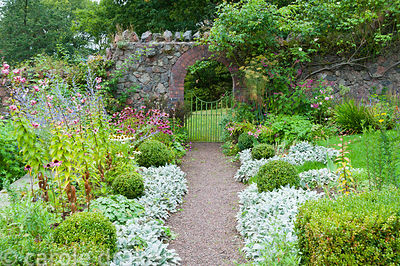 A path leads to a gate in the wall of the Walled Garden edged with stachys, box balls, echinaceas, lilies and perovskia. Perr...