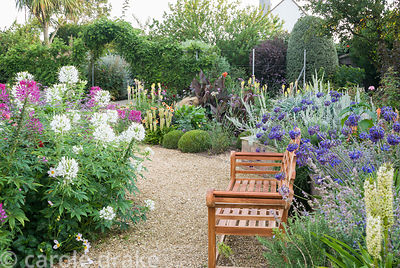 Gravel paths through the sunken garden are edged with a mass of colourful perennials and annuals including cleomes, agapanthu...
