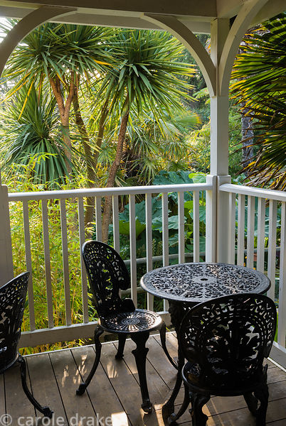 An array of lush foliage seen from the veranda of the Colonial Teahouse includes  bamboos, cordylines and Gunnera manicata. A...
