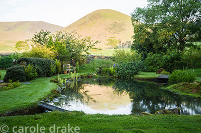 A still pool reflects the distinctive shape of The Tongue at dawn. Simple planting includes moss, ferns and irises.